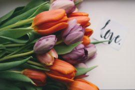 【結婚前の同棲のメリットとデメリット】彼氏と幸せな生活を送るためには?