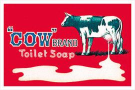 牛乳石鹸は洗顔にもおすすめ♡オーソドックスな中に光るこだわりと魅力を徹底分析!