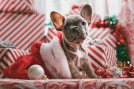 クリスマスまでにやること